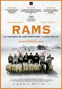 Rams, la historia de dos hermanos y ocho ovejas: Separados del rebaño 1