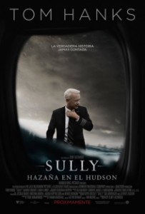 Sully: El gran héroe americano 5