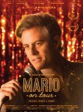 Mario on Tour: Seguir a pesar de todo 1