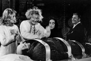 Grandes comedias del genial Mel Brooks en la Sala Lugones 8